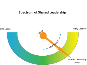 Spectrum of Shared Leadership