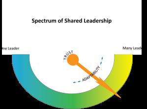 Spectrum of Shared Leadership